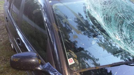 Maar de Saab heeft levens gered