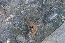 Geschmolzene Überreste und Flüssigkeiten