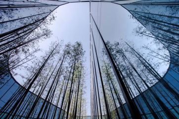 Nature and sustainability symbolize this detail in the Polestar production center in Chengdu