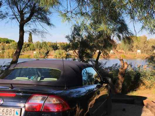 Saab ou Saab - ou une Saab Cabriolet?