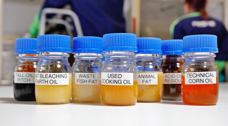Matérias-primas para gasolina sustentável