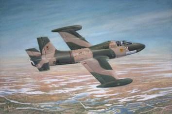 T-009-SAAF-Impala-Jamie-W