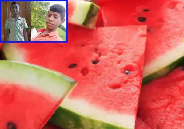 watermelon hydrabad