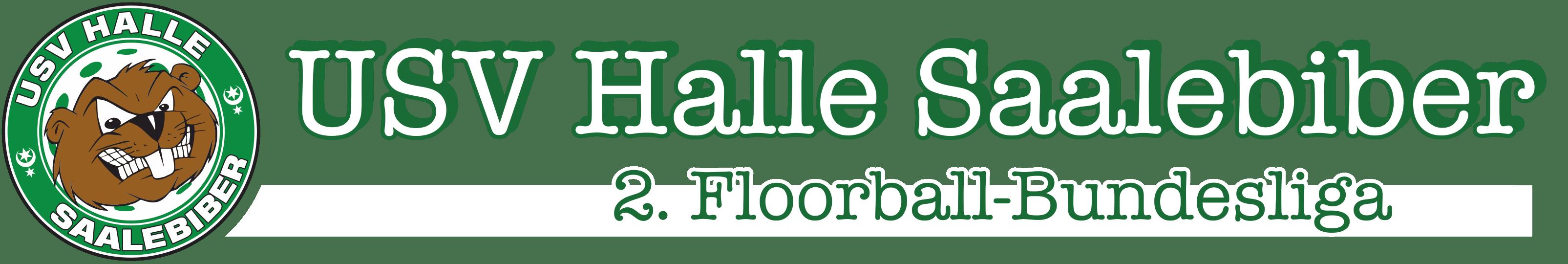USV Halle Saalebiber