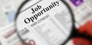 Govt Ready to Launch National Job Portal for Skilled Youth