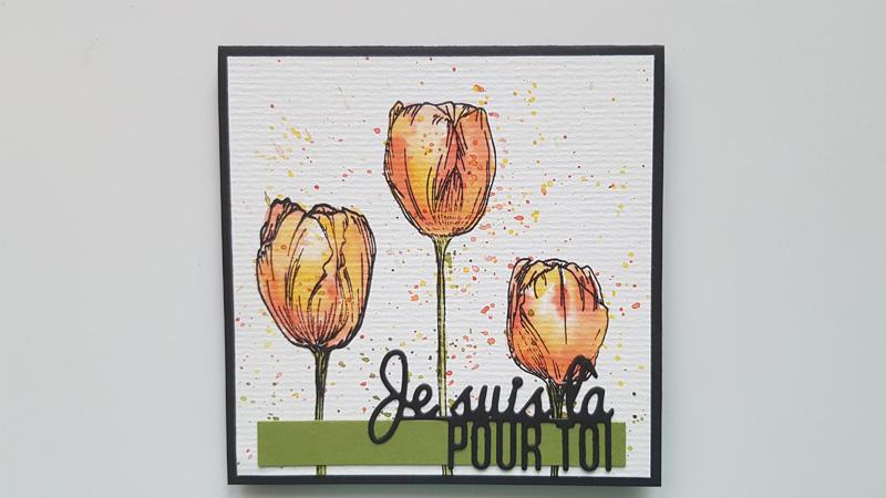 Trio de tulipes