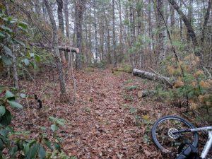 Ramsey Bluff Trail System - Murphy, NC