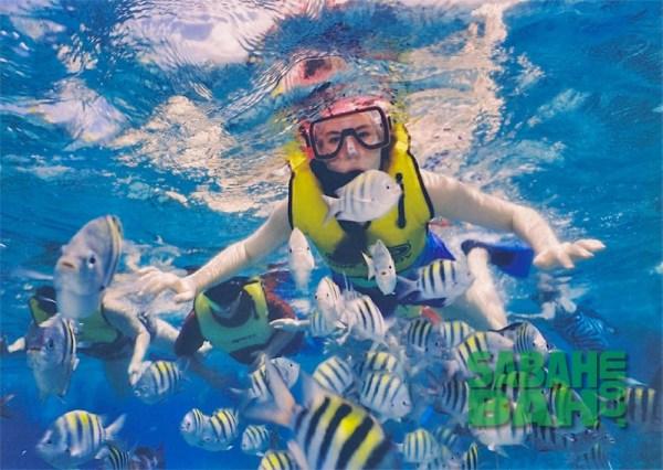 Snorkelling in the Tunku Abdul Rahman Marine Park in Kota Kinabalu, Sabah, Borneo
