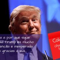 ¿Por qué Donald Trump sigue ganando? ^ Columnas X.