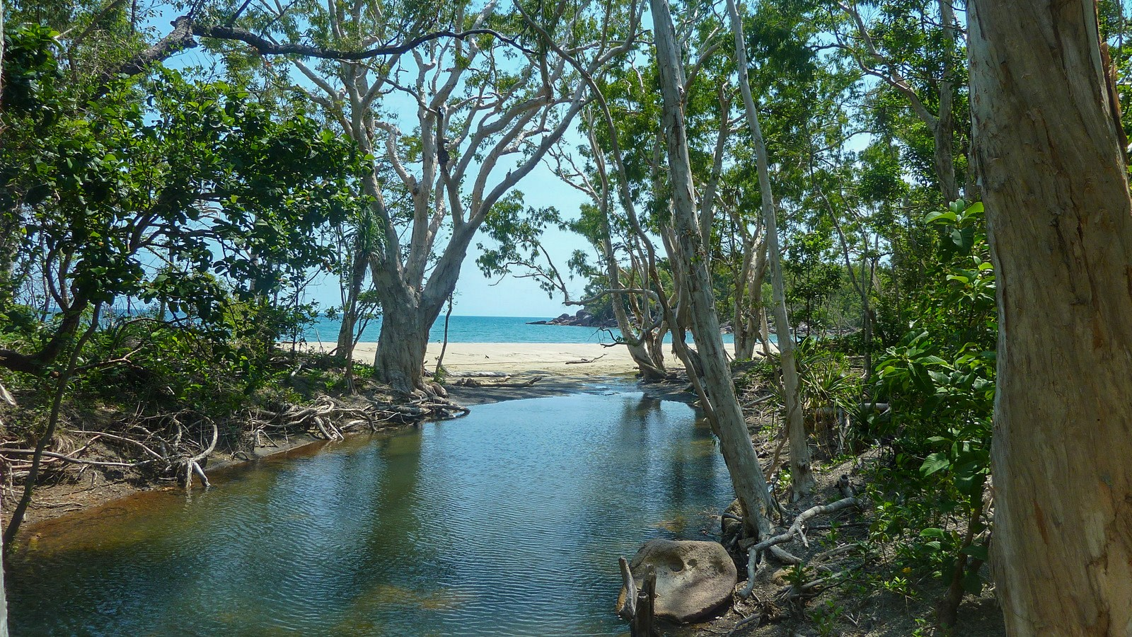 this is a photo of the first lagoon of the three day hike on hinchinbrook island