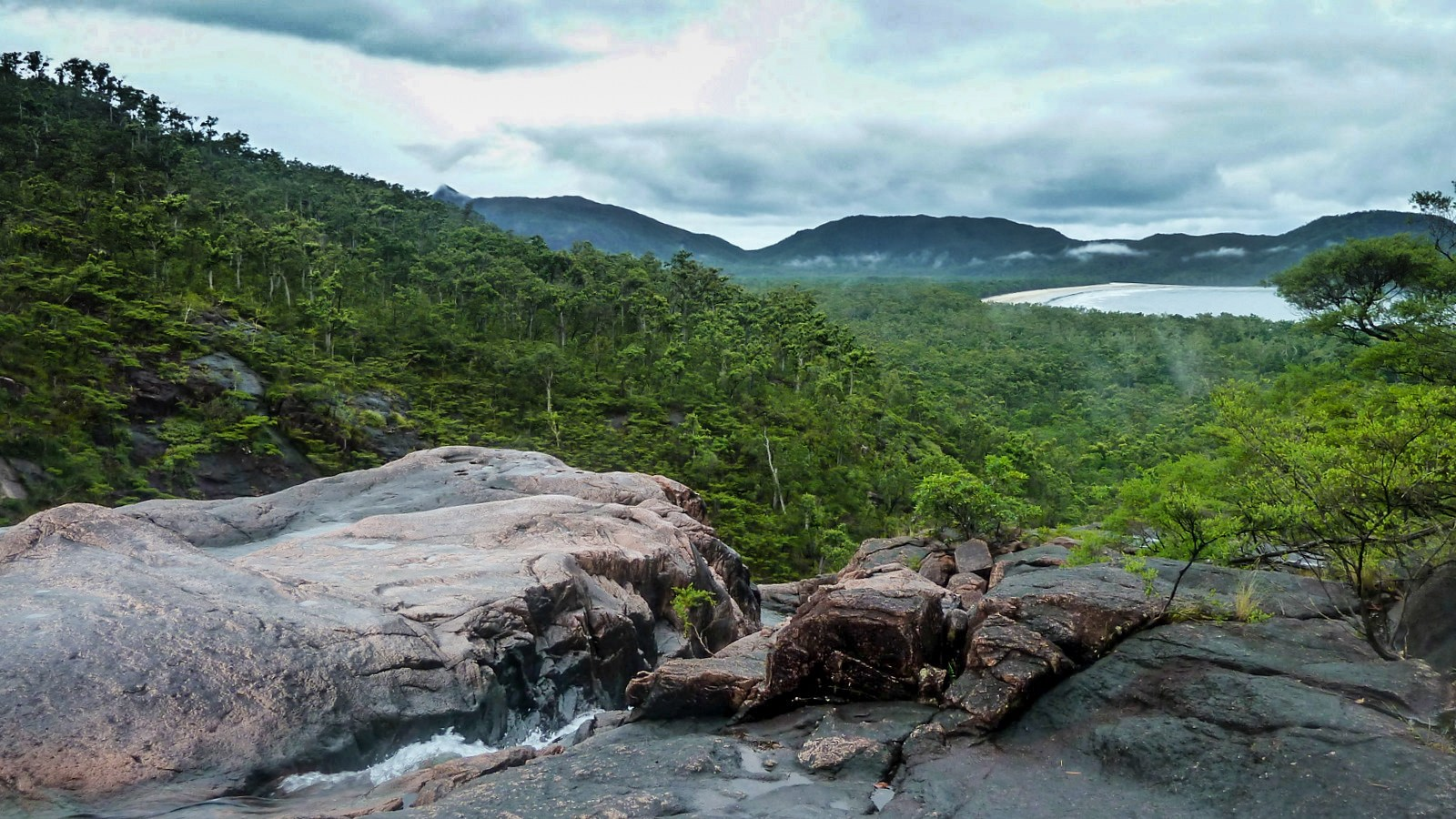 a photo of the mountains and jungle on hinchinbrook island