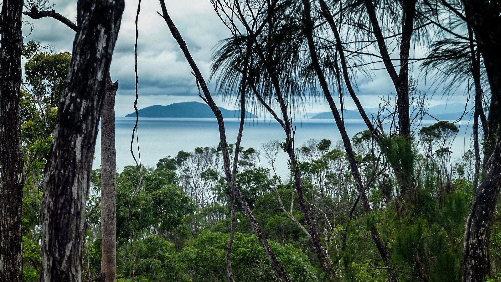 a photo of hinchinbrook's neighbouring islands