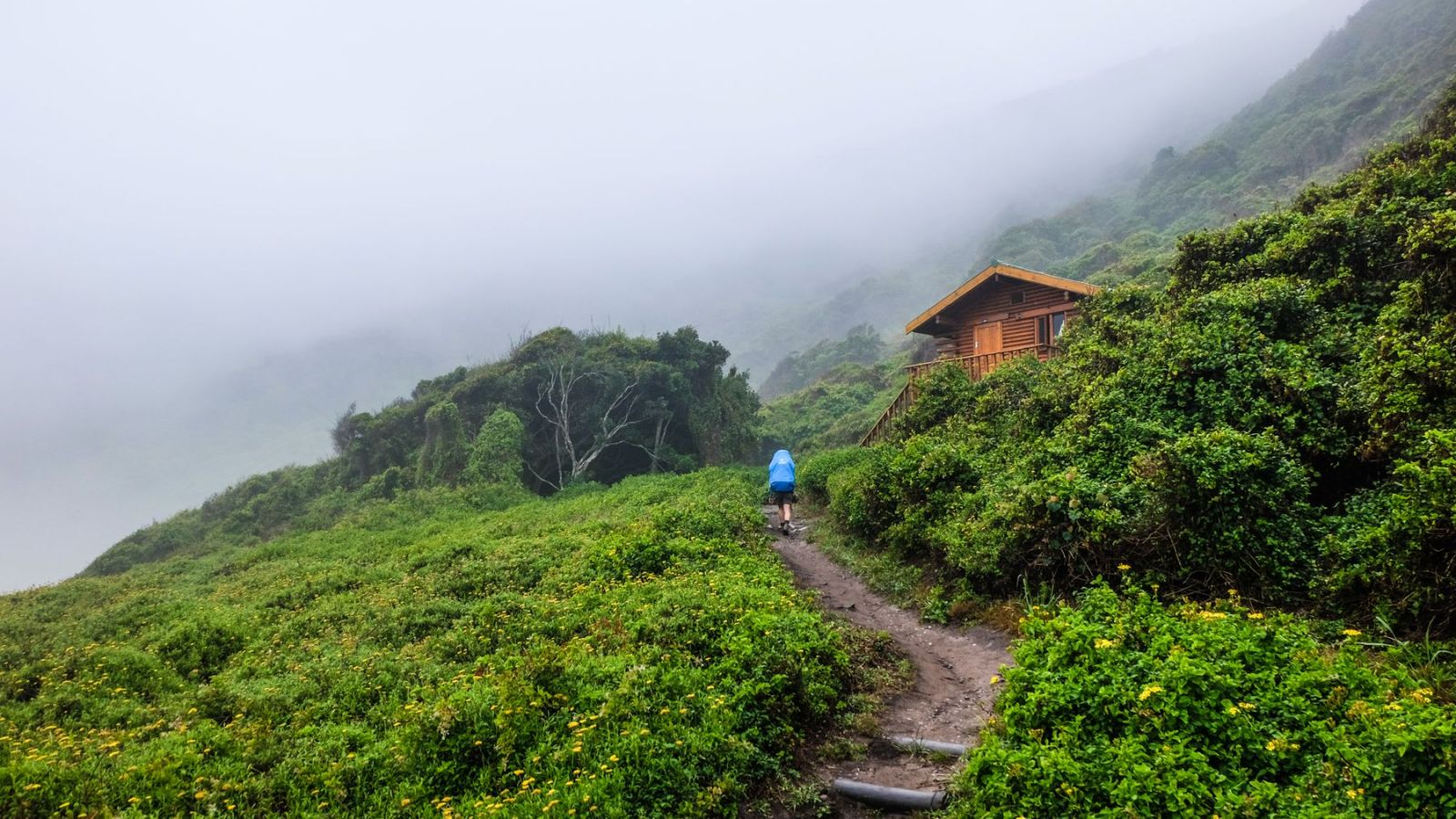 a photo of a hiker on the otter trail and a overnight hut in the background