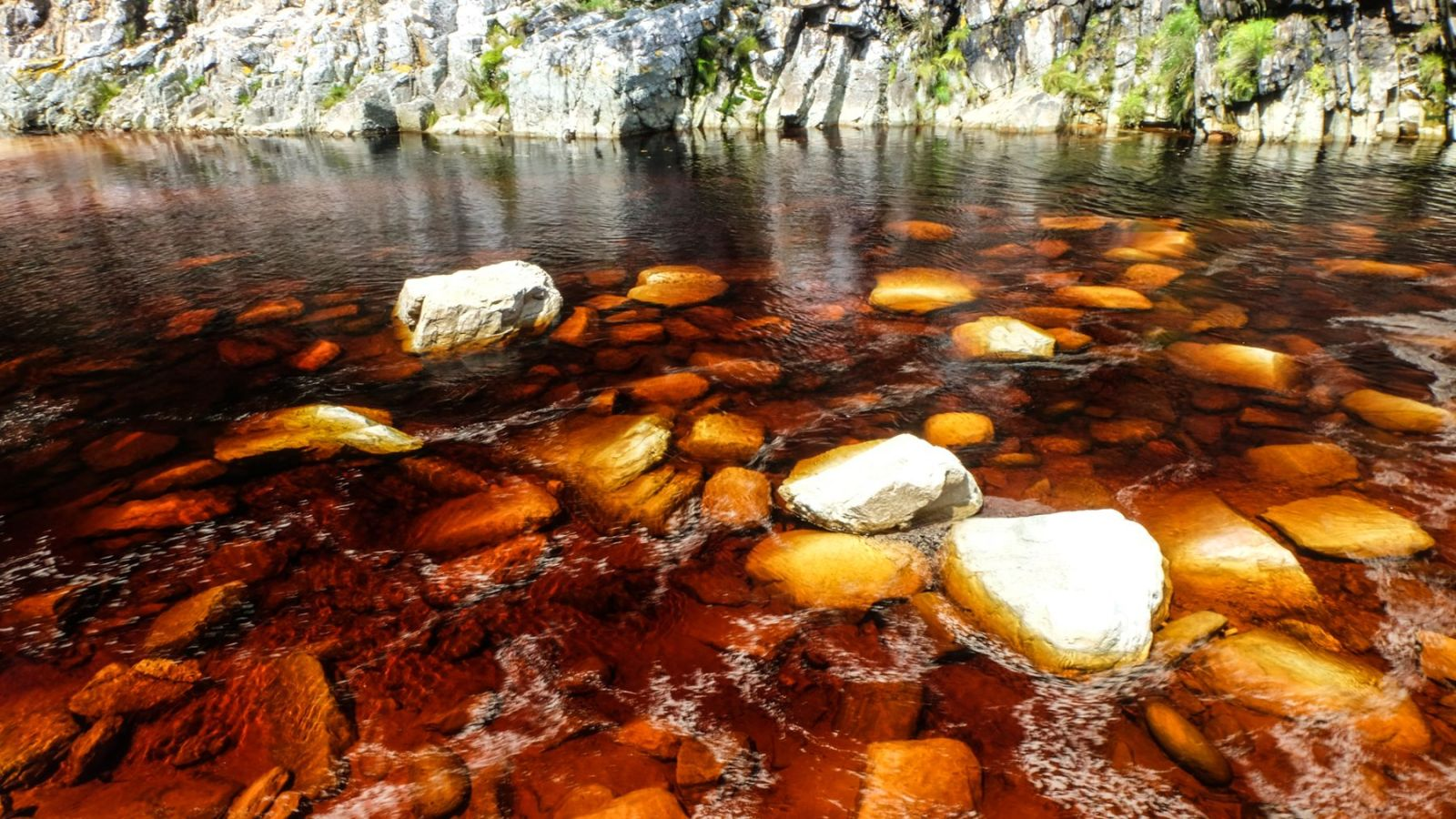 a photo of the brown tinted water on the otter trail