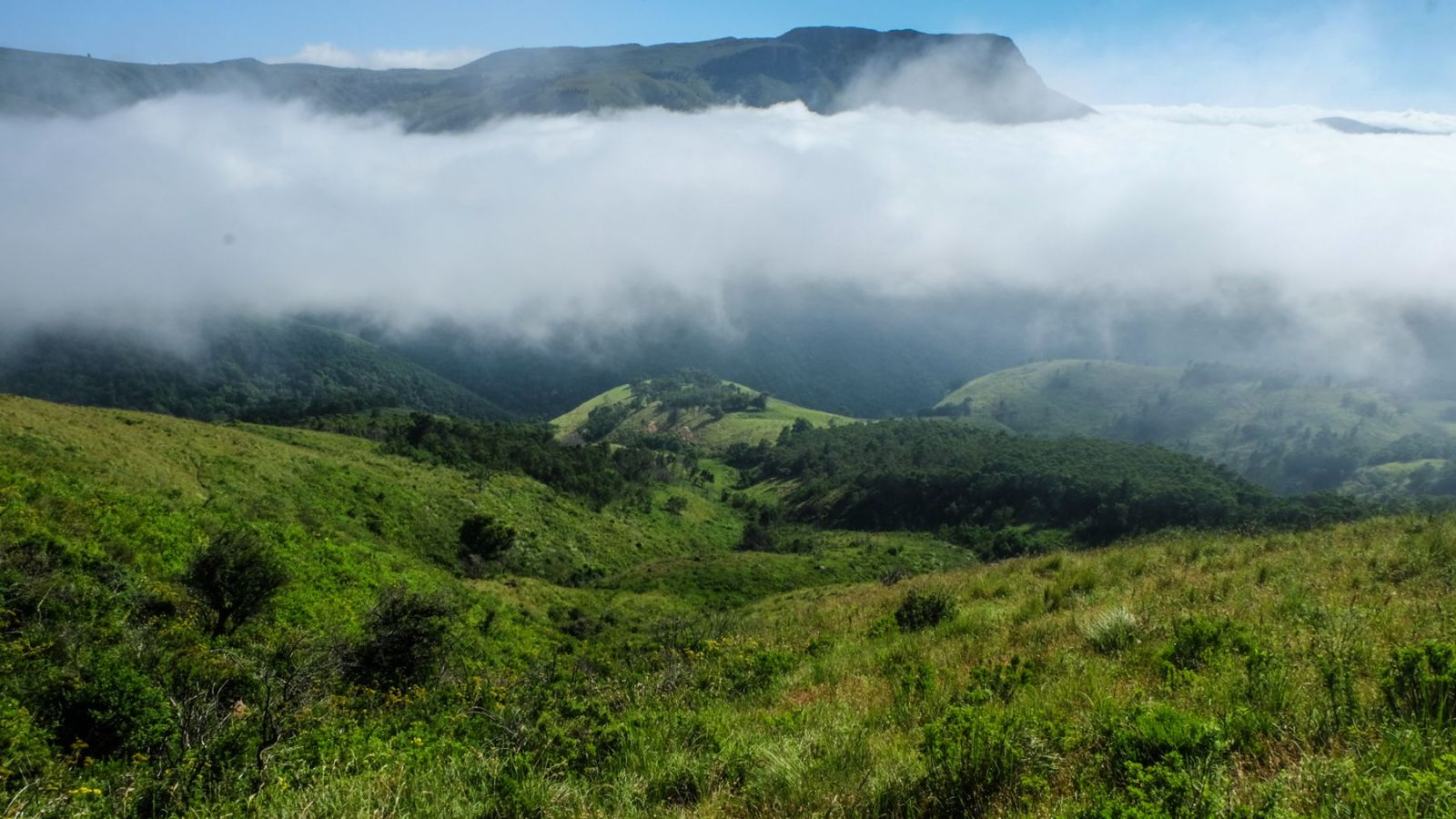a photo of clouds in a valley on the amathole trail.