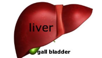 Case Study: Gall Bladder Stones Cured By Homeopathic