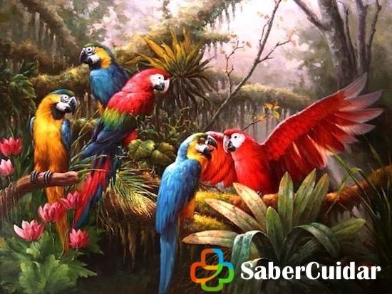 Pintura de guacamayos de colores en la selva