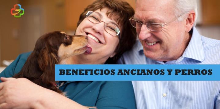 beneficios ancianos y perros