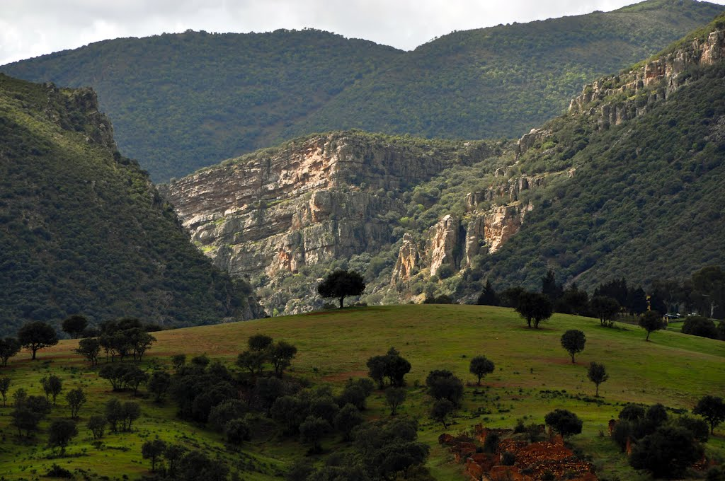 Garganta en Sierra Madrona. Autor, Eugenio Martín