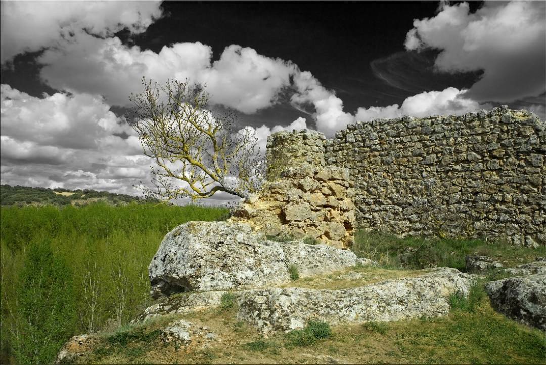 Ruinas del castillo berberisco de Rochafrida. Autor, Manuel Zaldívar
