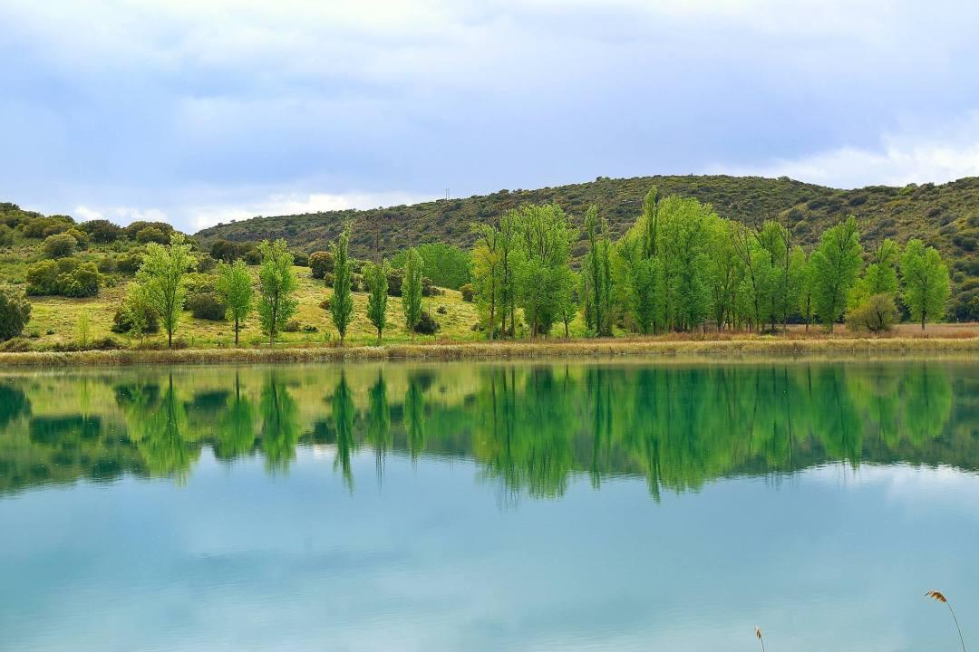Laguna del Rey. Autor, Bernardo Sevilla