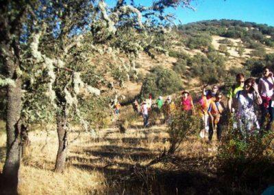 Del Castillo de Montizón a Venta Nueva, la fonda de Don Quijote