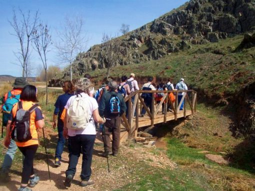 ruta-senderismo-interpretativo-hoces-gongares-terrinches-turismo-naturaleza-6