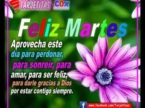 FELIZ MARTES – Hermoso Vídeo para desear un feliz día y muchas bendiciones