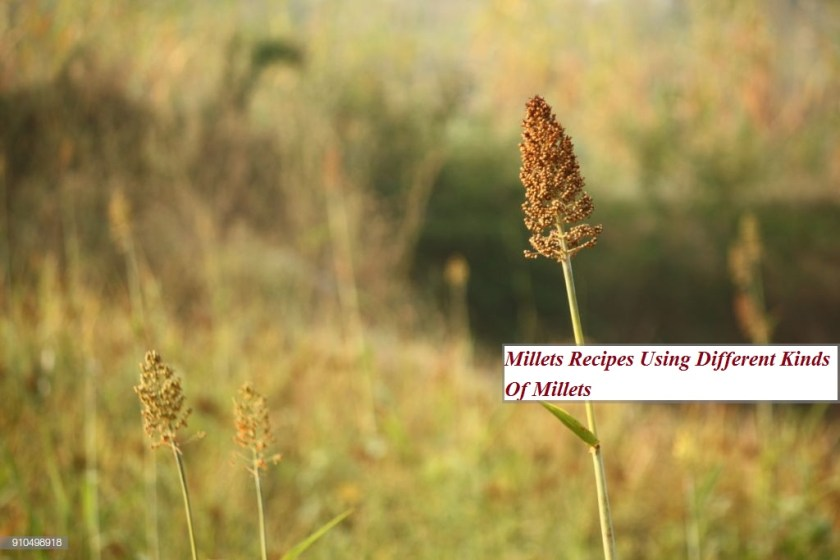 Millets Recipes Using Different Kinds Of Millets