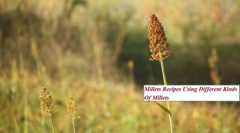 Cooking With Millet's - A collection of Millet's Recipe and techniques