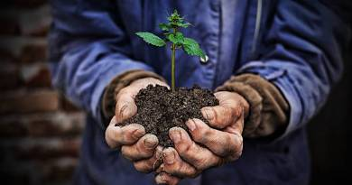 World Environment Day Quotes, SMS and Messages