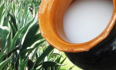 ¿Conoces las bebidas tradicionales de cada país?