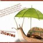 illustration enfant -illustration jeunesse- sabine hautefeuille-hippopotame,petites annonces des zigotos,illustration jeunesse
