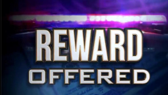 reward+offered+mgn