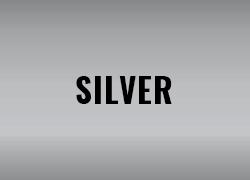 Warna Polyflex Silver