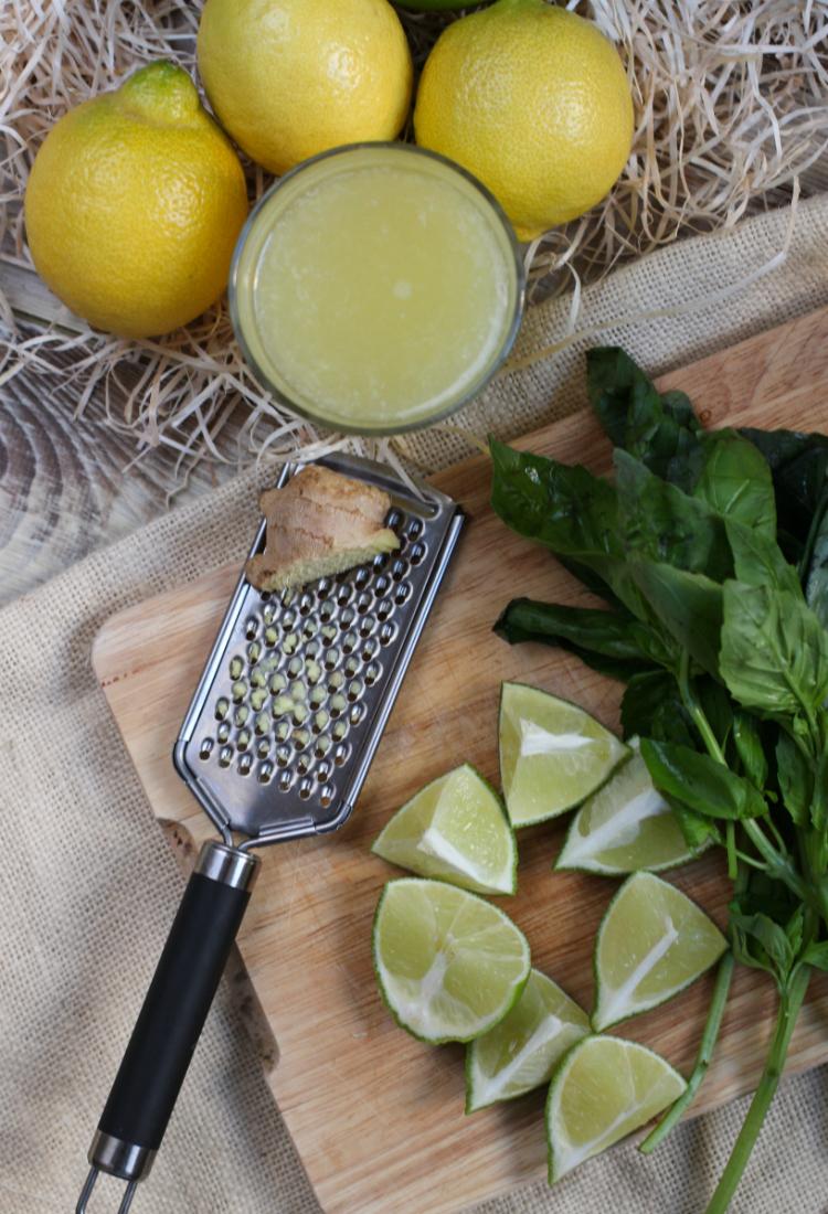 ingredientes-pisco-sour