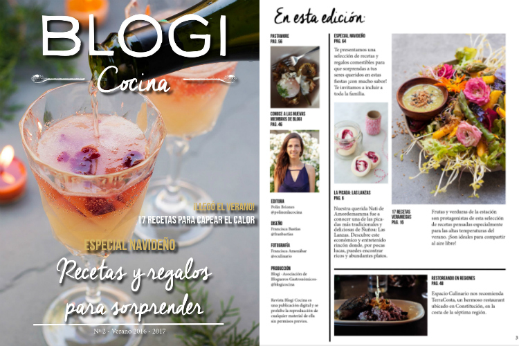 blogi-revista