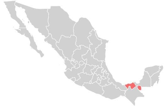 Platillos típicos de México en Tabasco