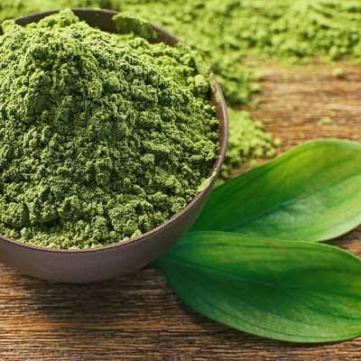 El té matcha es un concentrado puro de té verde