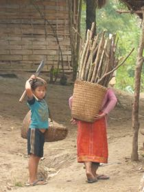 Hmong Children collecting wood