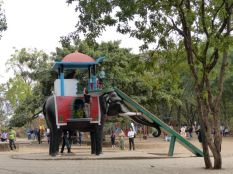 Who says India isn't for kids?