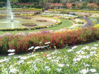 Mughal Garden - New Delhi
