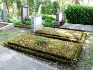 Moss covered graves - Sighisoara