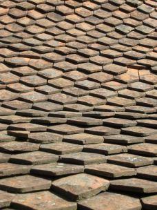 Old town roof tiles - Sfantu Gheorghe