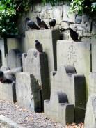 St Kevin's Churchyard, Dublin