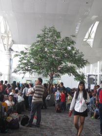 Medan Airport's artificial tree