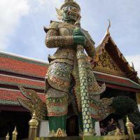Winter Weg: Bustling Balmy Bangkok
