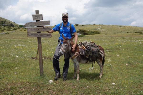 Wegweiser Eselwandern