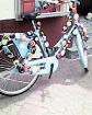Definitiv eine gute Verwendung der Klingeln, Fahrradfahren einmal ungewöhnlich und in voller Lautstärke mit bezauberndem Klingelcharme. Kurioses jeden Tag, überall zu sehen.