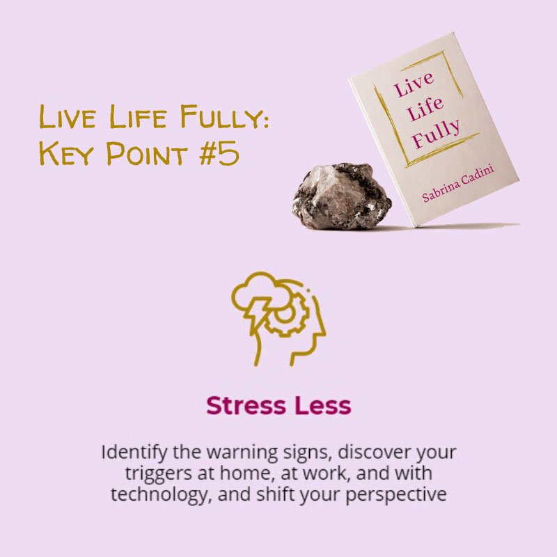 sabrina cadini live life fully book crowdfunding campaign life-work balance holistic life coach stress anxiety burnout